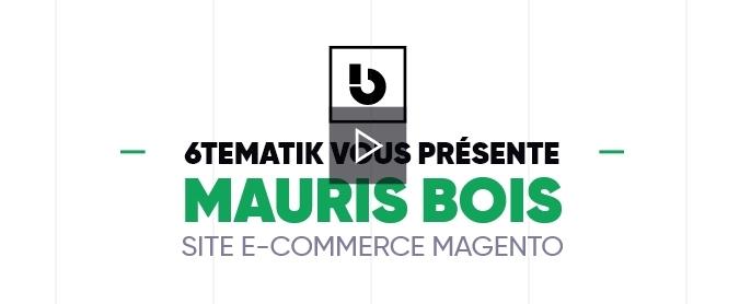 6tematik - Réalisation d'un site e-commerce Magento pour Mauris Bois